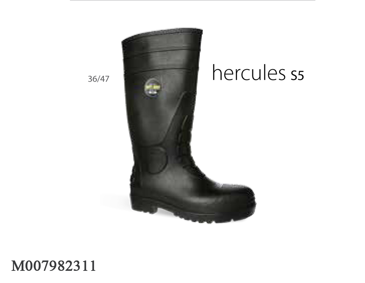 GIÀY BẢO HỘ JOGGER HERCULES S5